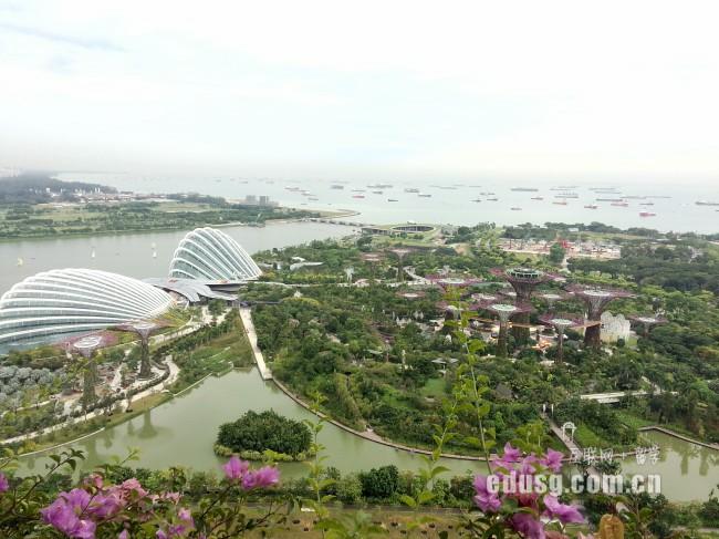 新加坡本科留学用度