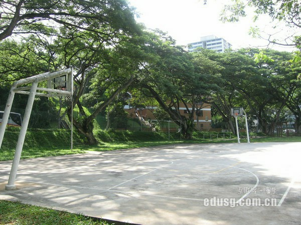 新加坡国立大学什么专业比较好