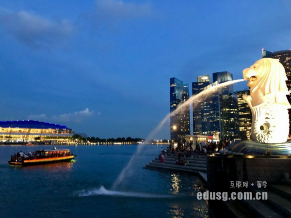 新加坡国立大学的专业是什么