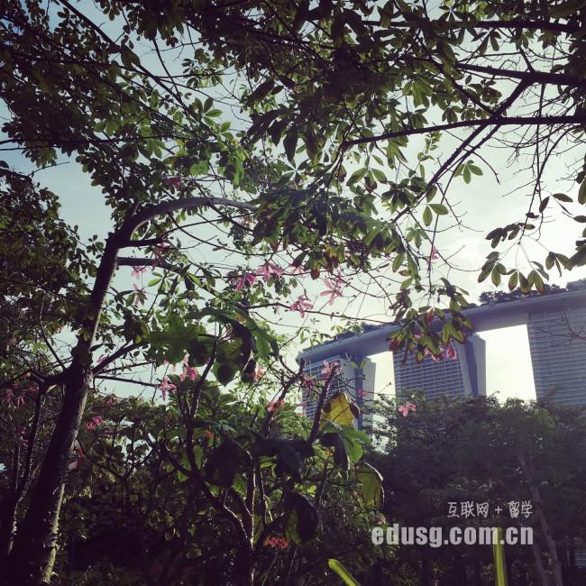 新加坡财经管理学院怎么申请