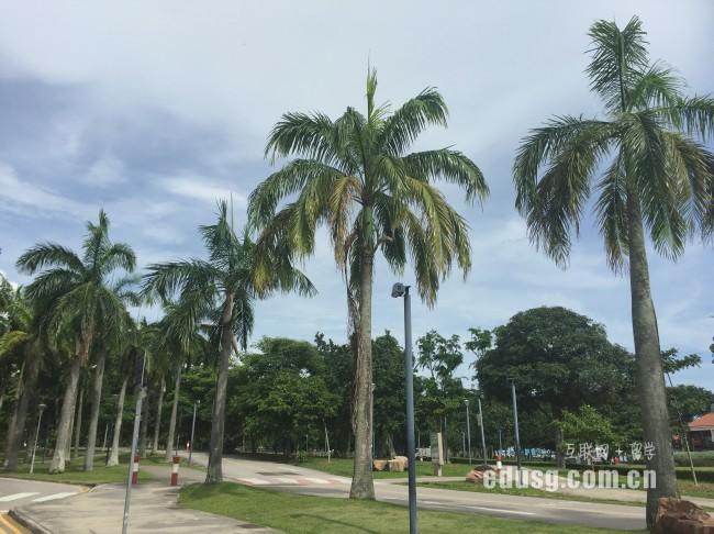 【第8369成功案例】马来西亚小朋友成功申请新加坡AEIS预备班