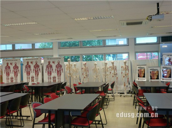 去新加坡读国际学校值得吗
