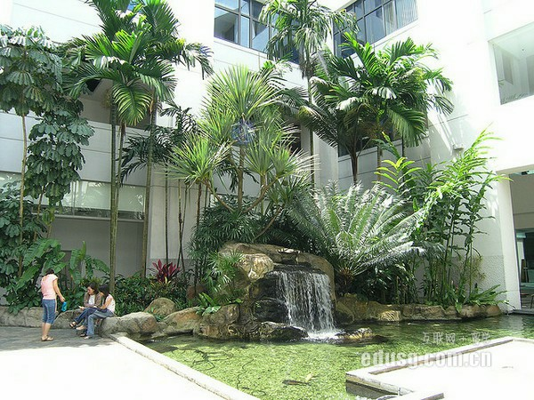 去新加坡读酒店管理硕士专业