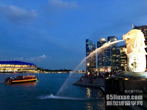 新加坡艺术类研究生费用