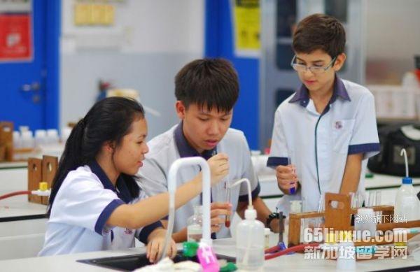 新加坡三育小学费用