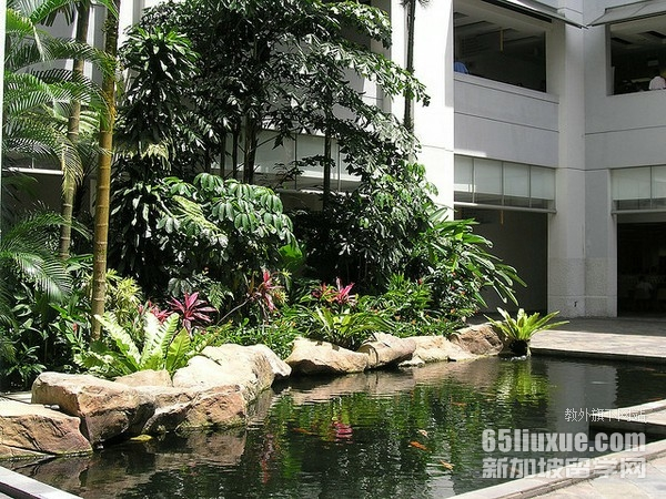 新加坡管理学院附近宿舍