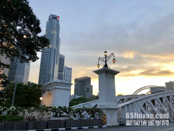 去新加坡读商科