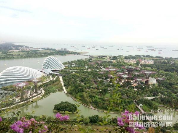 新加坡本科留学私立学校