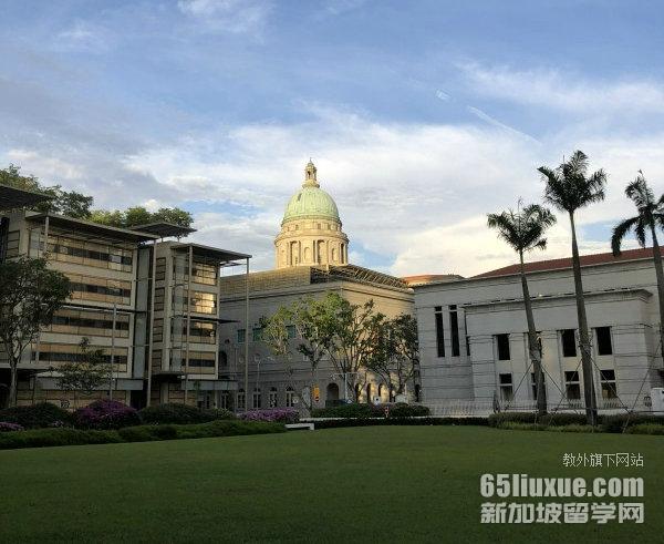 新加坡大学一年制硕士专业