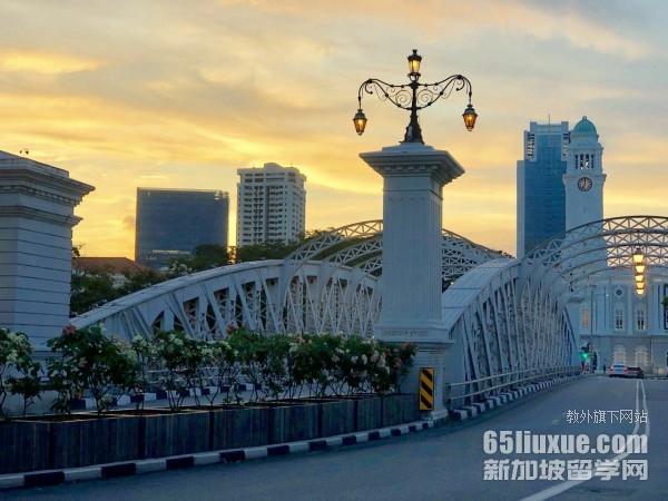 新加坡读国际商务的大学