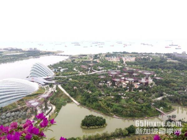 留学新加坡物流专业申请攻略