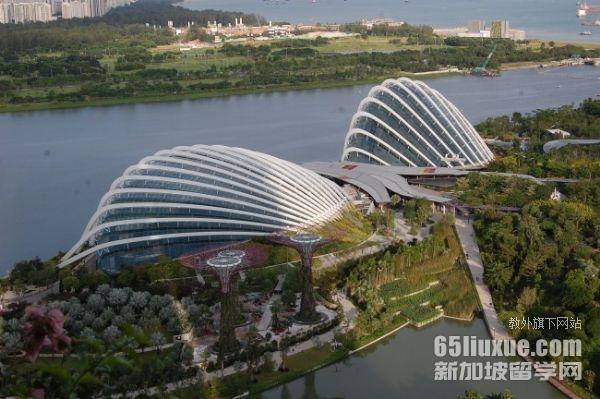 高三去新加坡留学