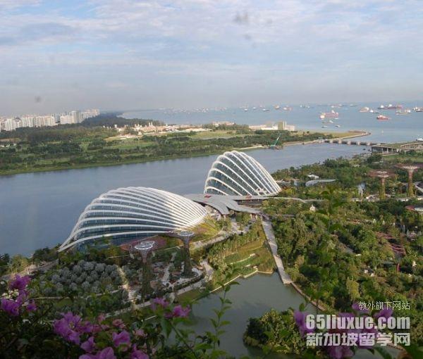 新加坡的高中入学率