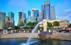 新加坡大学有哪些
