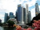 新加坡o水准考理工